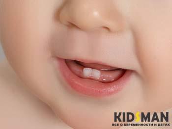 прорезаются зубы