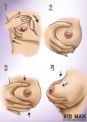 схема сцеживания грудного молока