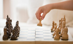 ТОП-14: онлайн-курсы и школы шахмат для детей