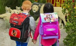 ТОП-3: Детские рюкзаки, ранцы объемом 22 литра