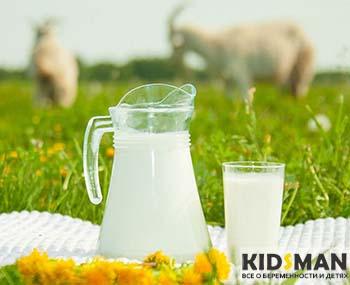кувшин с молоком